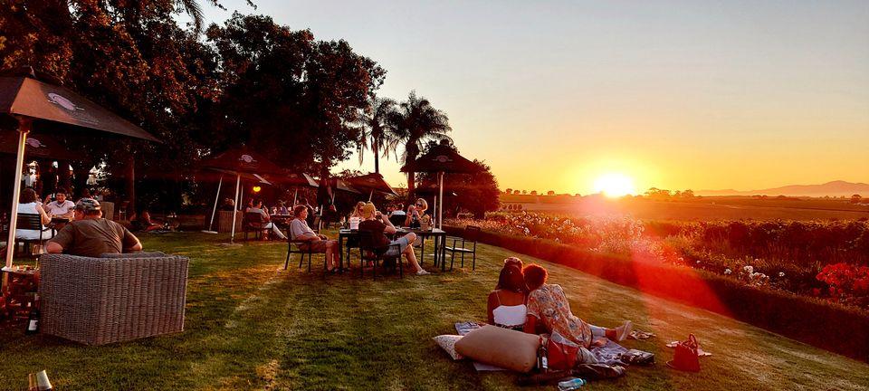 Sunset Rouge Evenings   Alto Wine Estate